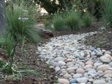 Dry Creek Beds